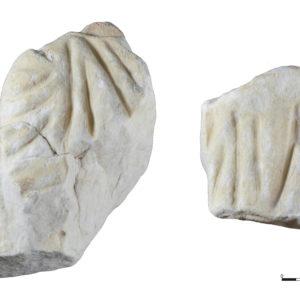 El sarcófago de Villa Petraria entra en el corpus de escultura romana de la Comunitat Valenciana