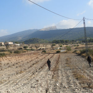 El diario Información se hace eco del proyecto arqueológico que se lleva a cabo en Puça