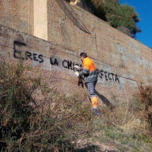 Nous grafits perjudiquen la imatge del castell de Petrer